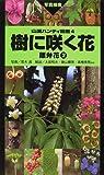 樹に咲く花—離弁花〈2〉 (山渓ハンディ図鑑)