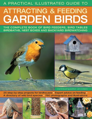 A Practical Illustrated Guide To Attracting & Feeding Garden Birds: The complete book of bird feeders, bird tables, birdbaths, nest boxes and backyard bird watching