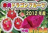 沖縄 宮古島産 赤肉ドラゴンフルーツ LL大玉 1コ ランキングお取り寄せ