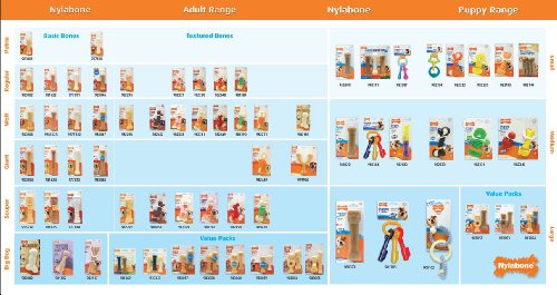Nylabone-Just-For-Puppies-Starter-Kit-Bone-Puppy-Dog-Chew-Toys