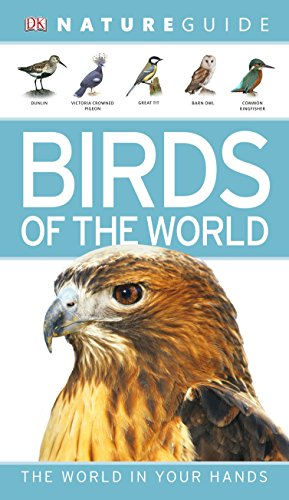 Nature Guide Birds of the World (Dk Nature Guide)