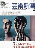 芸術新潮 2011年 02月号 [雑誌]