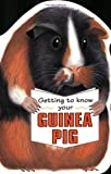 Getting to Know Your Guinea Pig (Children's Pet S.)