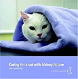 Caring for a Cat with Kidney Failure