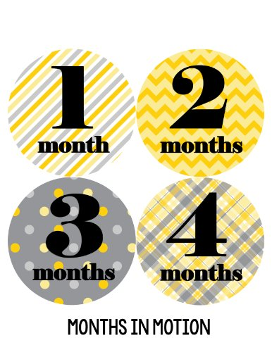 Months in Motion 020 Monthly Baby Stickers - Gender Neutral - Months 1-12 - Milestone Sticker - 1