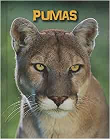 Pumas (Living in the Wild: Big Cats): Charlotte Guillain