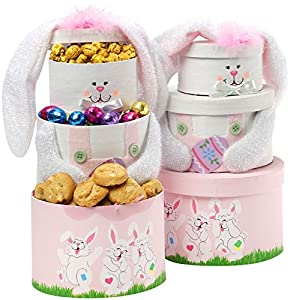 Art of Appreciation Gift Baskets Somebunny Special Easter Bunny Sweets Tower, Pink