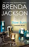 Slow Burn (0312940491) by Jackson, Brenda