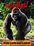 Gorillas! Learn About Gorillas and Enjoy Colorful Pictures - Look and Learn! (50+ Photos of Gorillas)