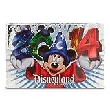 Disneyland Resort 2014 Small Photo Album