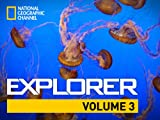 National Geographic Channel Explorer: Finding the Lost da Vinci