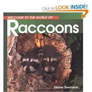 Raccoons (Welcome to the World Series)