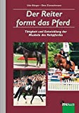 Der Reiter formt das Pferd: Tätigkeit und Entwicklung der Muskeln des Reitpferdes
