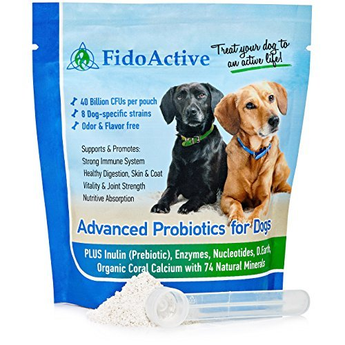 Advanced Probiotics for Dogs with 40 Billion CFUs per Pouch Includes Enzymes and Prebiotic to Fortify the Immune System and Promote Healthy Digestion Skin and Coat (6-oz Powder - scoop included) (Young Again Dog Food compare prices)