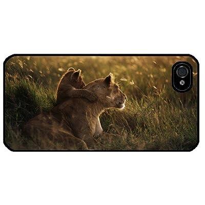 Iphone 5 case  カバー Lioness 雌ライオン ref 2003