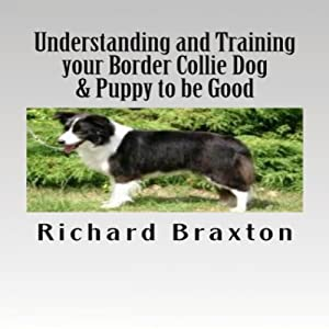 Understanding and Training Your Border Collie Dog & Puppy to be Good | [Richard Braxton]