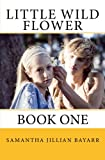 Little Wild Flower, Book 1 (Little Wild Flower, an Amish Romance)