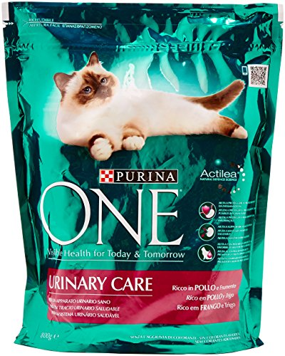 Purina - One Ricco In Pollo E Frumento - 800 G