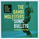 Sonic Bullets-13 from the