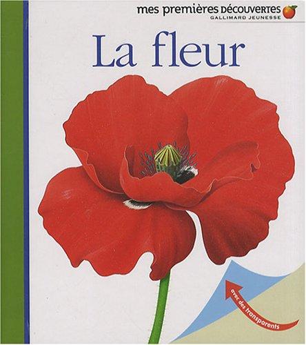 La fleur COLLECTIF, grand format