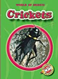 Crickets (Blastoff! Readers: World of Insects)