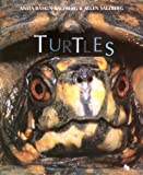 img - for Turtles (First Books--Animals) by Anita Baskin-Salzberg (1998-03-01) book / textbook / text book