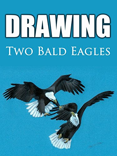 Clip: Drawing Two Bald Eagles