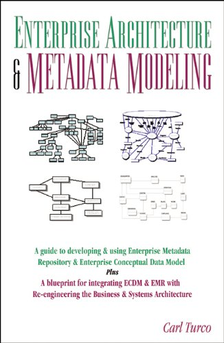 Enterprise Architecture & Metadata Modeling: A Guide to Conceptual Data Model, Metadata Repository, Business and Systems Re-Engineering