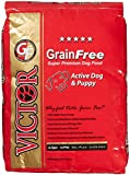 Victor Dog Food Grain-Free Active Dog and Puppy Beef Meal and Sweet Potato, 15-Pound