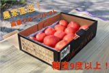 大内ファーム 農家直送! 採れたて 高級フルーツトマト (2kg箱) 数量限定!期間限定!