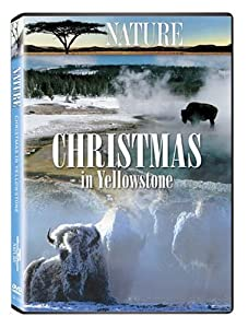 Christmas In Yellowstone by Questar