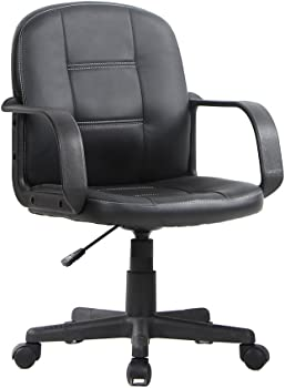 Awesome VIVA Ergonomic Mid Back Office Chair