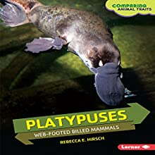 Platypuses: Web-Footed Billed Mammals Audiobook by Rebecca E. Hirsch Narrated by  Intuitive