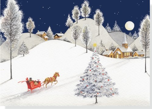 Deluxe Boxed Christmas Cards: Moonlight Sleigh Ride