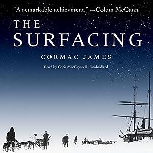 The Surfacing Audiobook