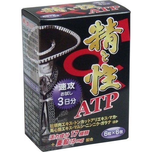 メイクトモロー 精と性 ATP 箱入 6粒×6包