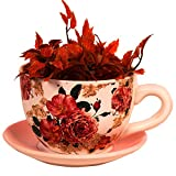 Purpledip Teacup shaped Ceramic Planter, Pot, Container for Desk, Garden, Indoor pots (10239)