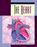 The Heart (Human Body (Child s World))