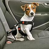 Bild: Hundegeschirr AutoSicherheitsgurt Autosicherheitsgeschirr  Schwarz  XS  XL