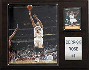 NBA Derrick Rose Chicago Bulls Player Plaque by C&I Collectables