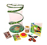 Insect Lore Butterfly Garden Gift Set with 5 Caterpillars