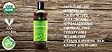 Organic Vegetable Glycerin by Sky Organics - Non-GMO, Kosher, USP Grade, Hypoallergenic, Cold-pressed - Benefits Hair & Skin - Excellent Emollient- Ideal Soap Base, Moisturizer and DIY- 8oz
