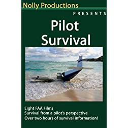 Pilot Survival