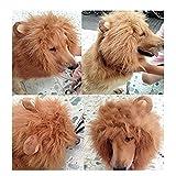 Gimilife Dog Costume Lion Mane Wig (Red Brown)