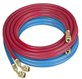 Robinair (68020) Enviro-Guard Hose Set with 1/4