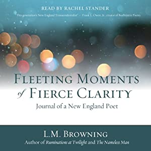 Fleeting Moments of Fierce Clarity Audiobook