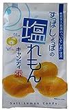 松屋製菓 塩レモンキャンディ 100g×10袋