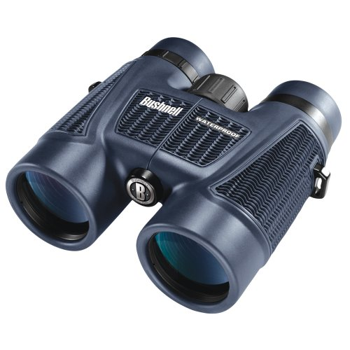 The Amazing Quality Bushnell H2O Series 8X42 Wp/Fp Roof Prism Binocular
