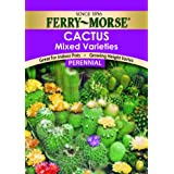 Ferry-Morse Seed Company Cactus Mixed Varieties Succulent Plant