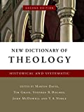 img - for New Dictionary of Theology: Historical and Systematic book / textbook / text book